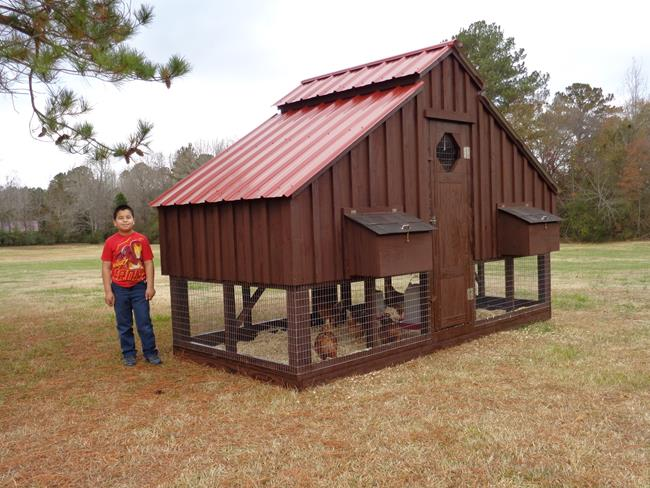 David S Chicken Coops Chicken Pens Shed Amp Fence Builder